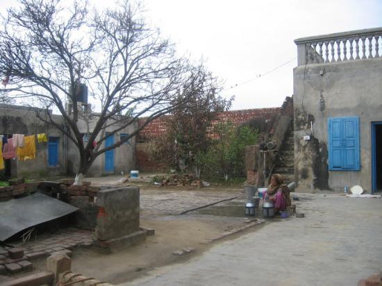 hindistan-chima-evin-avlusu
