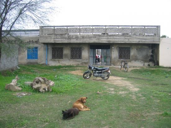 hindistan-chima-kaldigim-ev