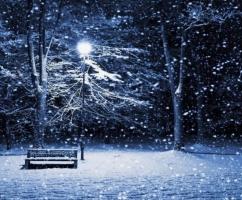 Şehir ve kış